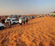 desert_safari_dubai_morning